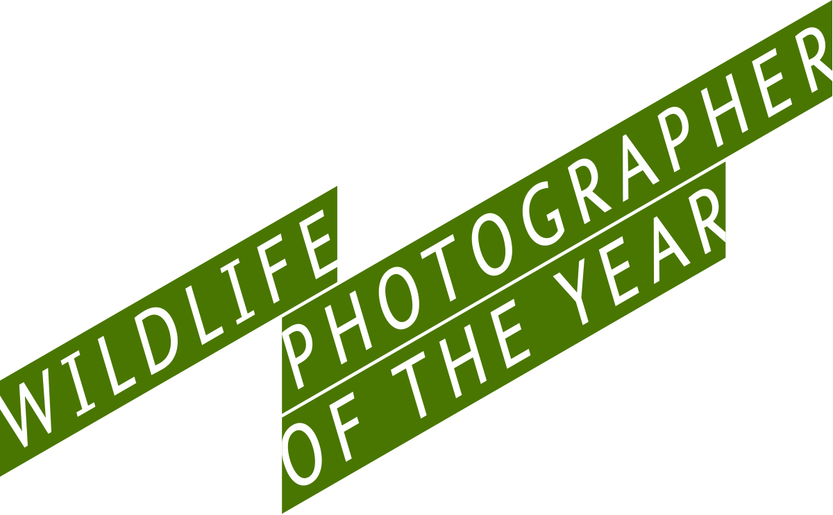 Wildlife Photographer of the Year