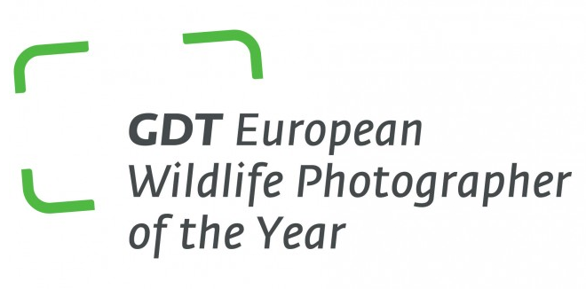 GDT European Wildlife Photographer of the Year 2019