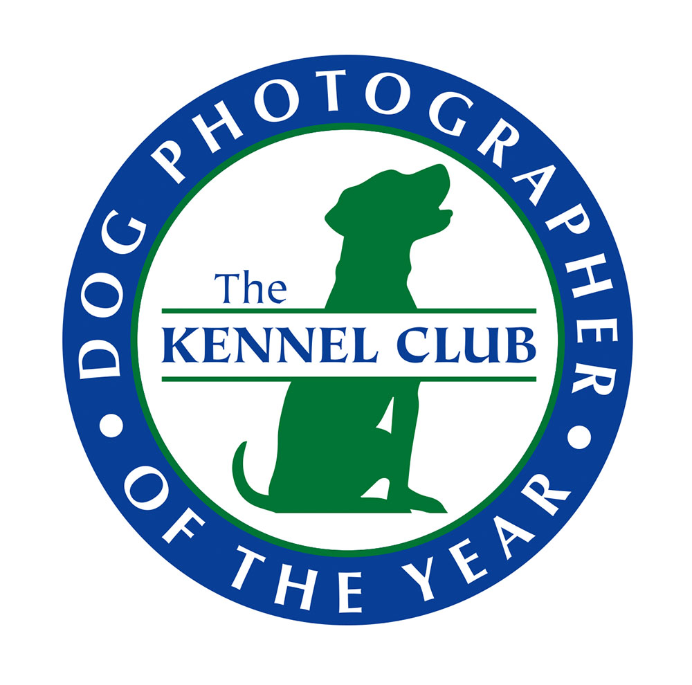 Kennel Club Dog Photographer of the Year 2019
