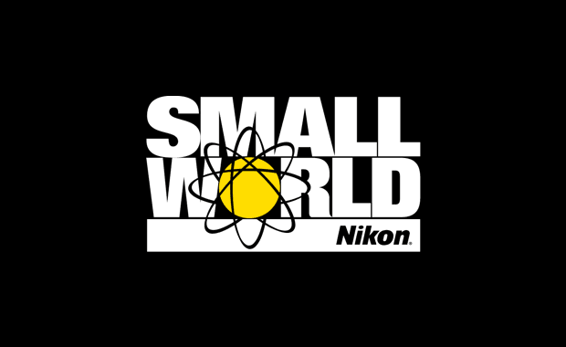Nikon Small World Competition 2019